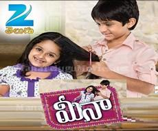 Meena New Teugu Serial –  E 294 – 15th Mar